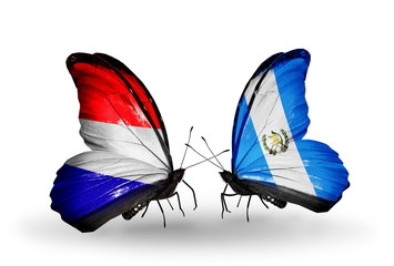 Two butterflies with flags Holland and Guatemala