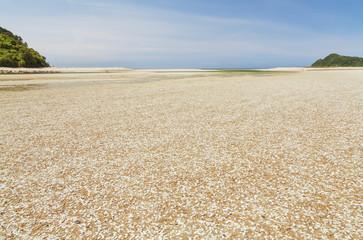 Awaroa Bay