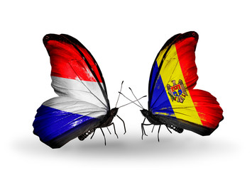 Two butterflies with flags Holland and Moldova