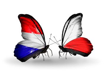 Two butterflies with flags Holland and Poland