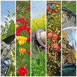 canvas print picture - Gartenarbeit