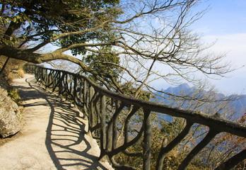 Walk at Tianmenshan. Zhangjiajie Mountains. China