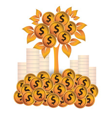 Money tree, Financial and business concept.