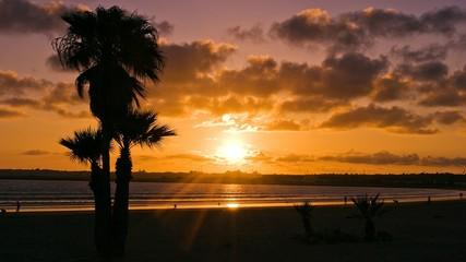 Atardecer en playa palmera