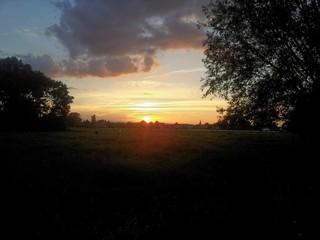 Sonnenuntergang über einer Wiese