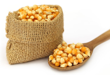 Corns in sack bag with spoon