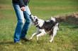 canvas print picture - Mann spielt mit Hund