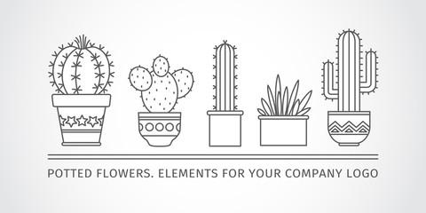 linear design potted cactus. corporate logo. Vector