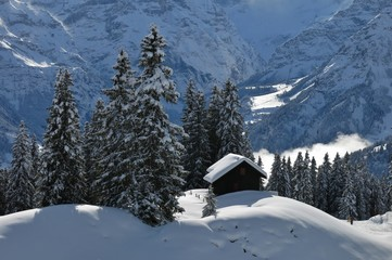 Winter scene in Braunwald