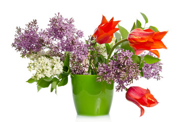 Colorful bouquet of tulips and lilac branches in green pot