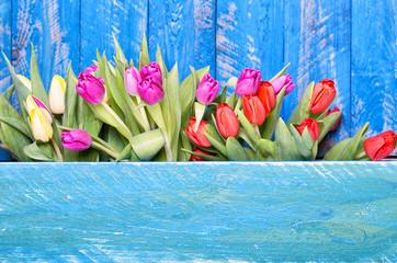 Frühling Blumen Holzhintergrund