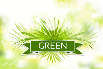 green grass with spring abstract blur background vector