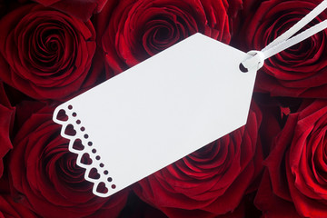 Blank Paper Label on Red Roses
