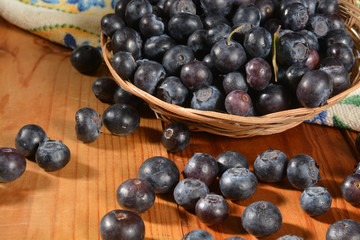 Basket of fresh organic blueberries