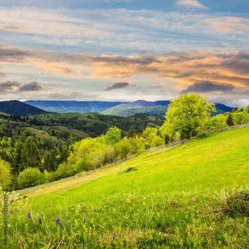 fence on hillside meadow in mountain at sunrise © Pellinni
