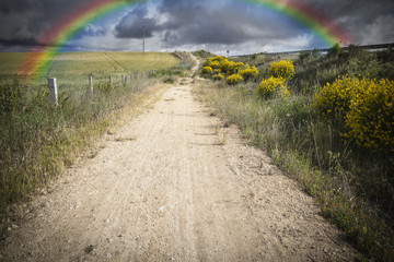 a long rural path on a cloudy day with a rainbow