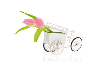 Old transport bike with flowers