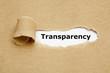 Leinwanddruck Bild - Transparency Torn Paper Concept