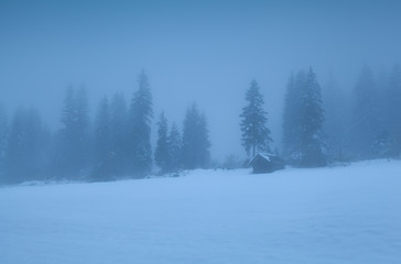 old hut in foggy alpine forest