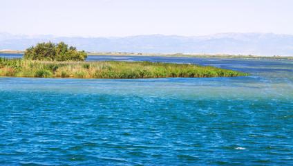 Delta of Ebro river