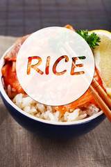 Bowl of rice with salmon and space for your text
