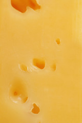 Close-up of cheese (macro)