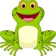 Happy Frog cartoon - 76400329