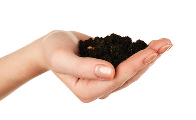 Handful of soil isolated on white