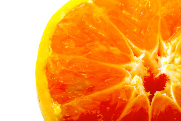 closeup Fresh juicy orange