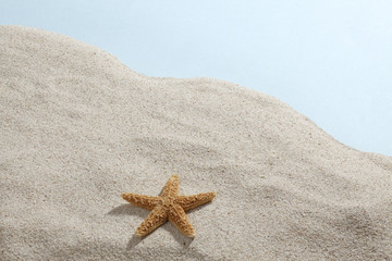 Starfish & Beach