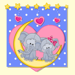 Lovers Elephants