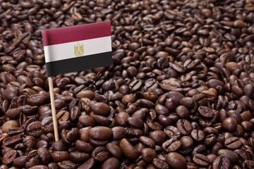 Flag of Egypt sticking in coffee beans.(series)