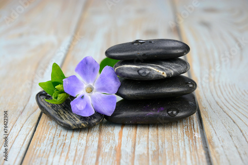 Black zen stones with purple flower плакат