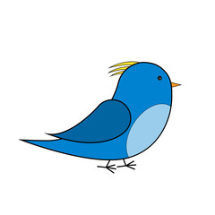 blue and yellow bird vector