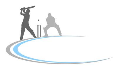 cricket - 13