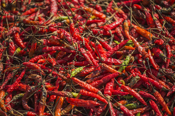 Dried red chili pepper background
