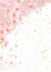 桜 和柄 ハガキサイズ 鮫小紋