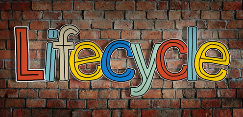 Lifecycle Brick wall Single Word Text Background Clean Concept
