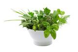 Emaille-Schale mit gemischten frischen Gartenkräutern