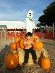 Ghost in pumpkin patch