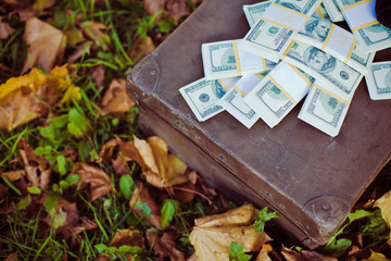 Vintage suitcase with dollars lying on leaves