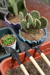 Mini garden tools