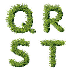 Green Grass Alphabet Q R S T