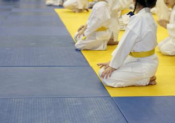 Girl in kimono for martial arts sitting on tatami