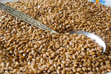 Pearl barley.tif