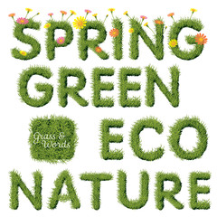 Green Grass Spring & Ecology Word