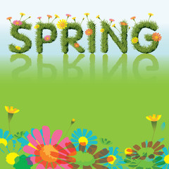 Flowers Spring Season Background with Grass Font