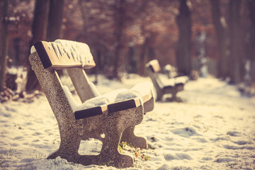 Bench in the park and snow time.