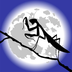 silhouette di mantide sotto la luna