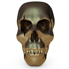 Skull001